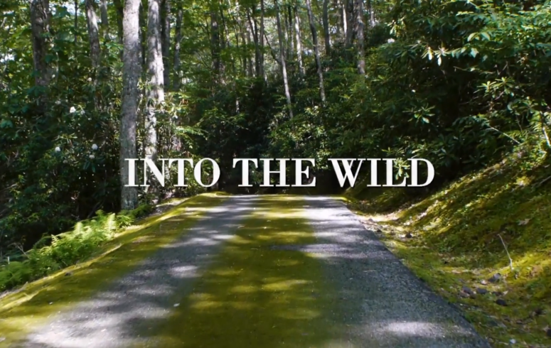 Into The Wild, Prêt-à-porter AH 2018